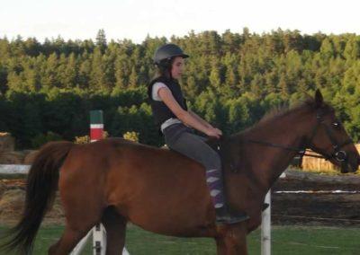 oboz-konie-2015-3-0270