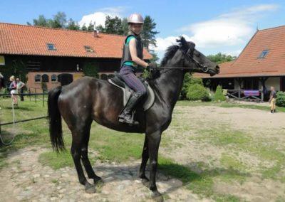 oboz-konie-2015-4-0003