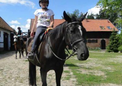 oboz-konie-2015-4-0005