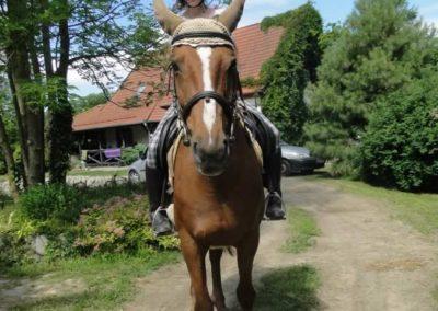oboz-konie-2015-4-0008