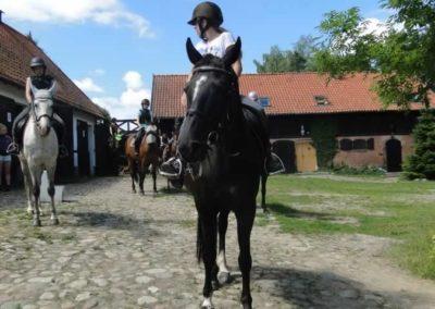 oboz-konie-2015-4-0010