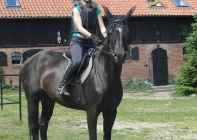oboz-konie-2015-4-0011