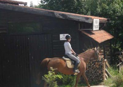 oboz-konie-2015-4-0019