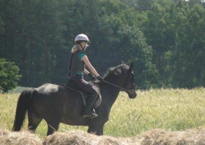 oboz-konie-2015-4-0027