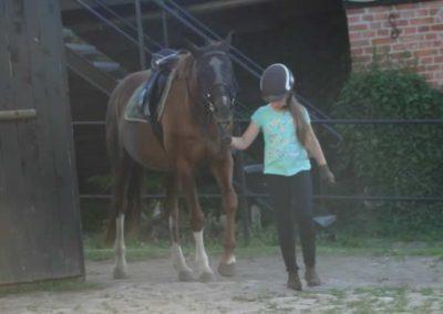 oboz-konie-2015-4-0049