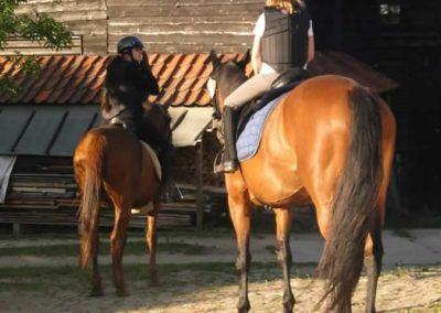 oboz-konie-2015-4-0058