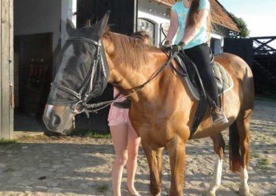 oboz-konie-2015-4-0069