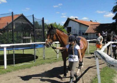 oboz-konie-2015-5-0002