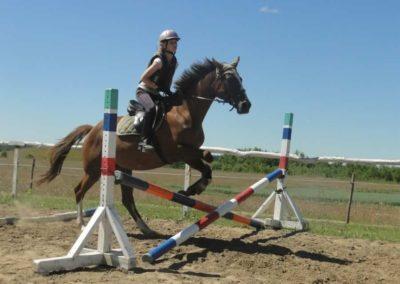 oboz-konie-2015-5-0048