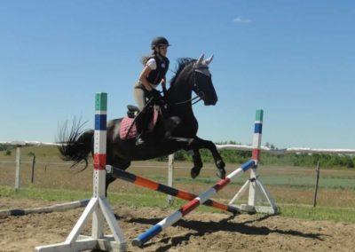 oboz-konie-2015-5-0049