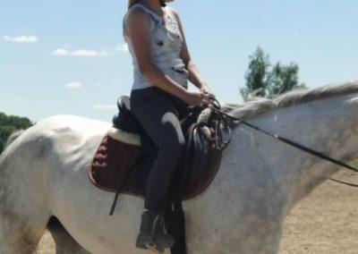 oboz-konie-2015-5-0173