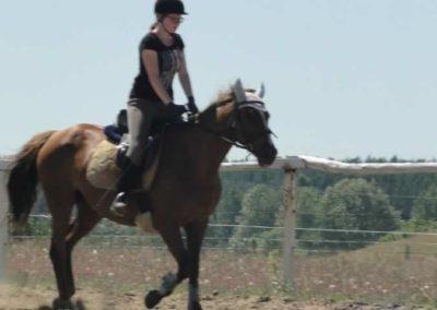 oboz-konie-2015-5-0191