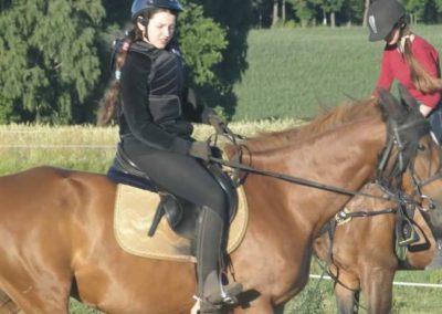 oboz-konie-2015-5-0255