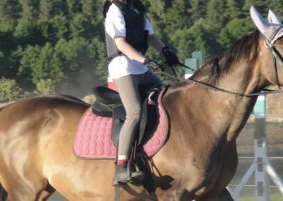 oboz-konie-2015-5-0271
