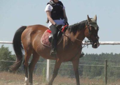 oboz-konie-2015-6-0004