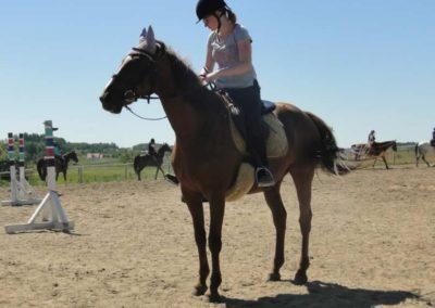oboz-konie-2015-6-0012
