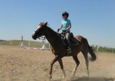 oboz-konie-2015-6-0019