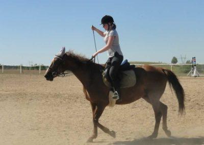 oboz-konie-2015-6-0022