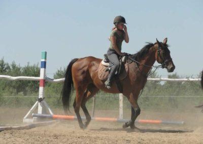 oboz-konie-2015-6-0027