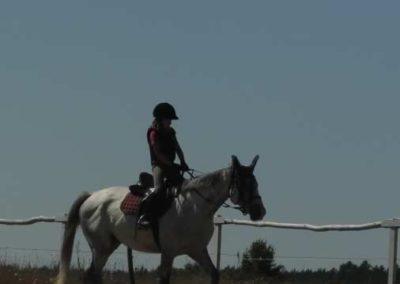 oboz-konie-2015-6-0031