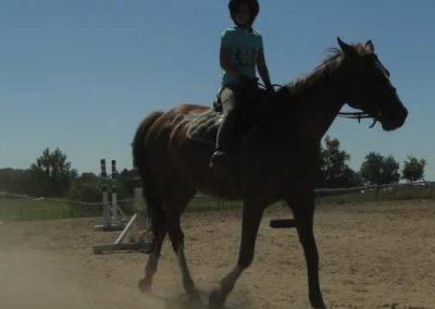 oboz-konie-2015-6-0033
