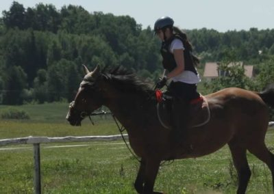 oboz-konie-2015-6-0038