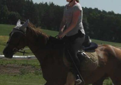 oboz-konie-2015-6-0039
