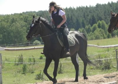 oboz-konie-2015-6-0042