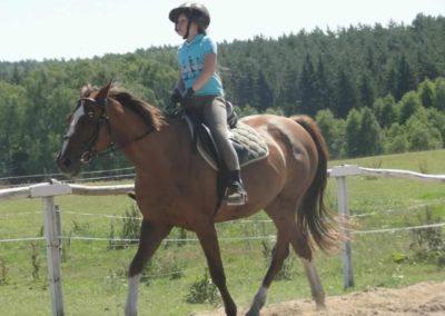 oboz-konie-2015-6-0043