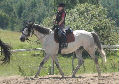 oboz-konie-2015-6-0045