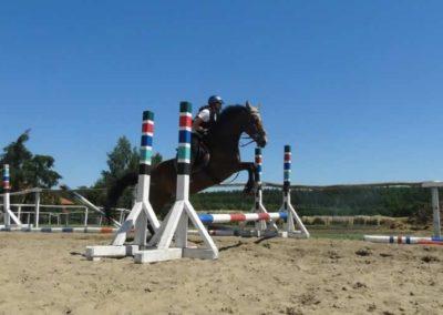 oboz-konie-2015-6-0056