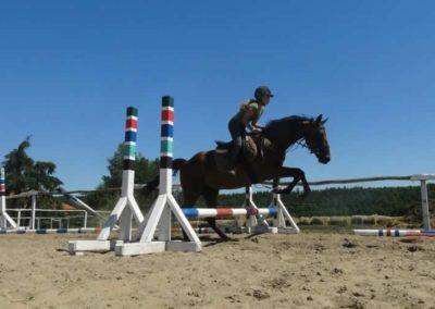 oboz-konie-2015-6-0058