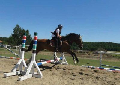 oboz-konie-2015-6-0060