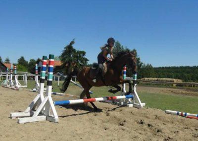 oboz-konie-2015-6-0063