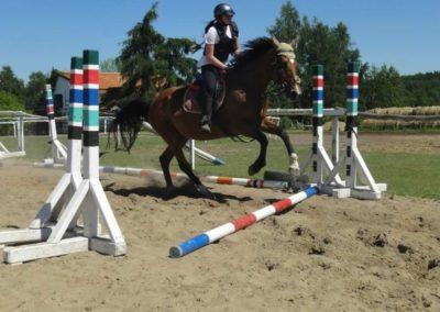 oboz-konie-2015-6-0066