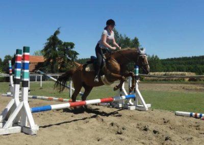 oboz-konie-2015-6-0067