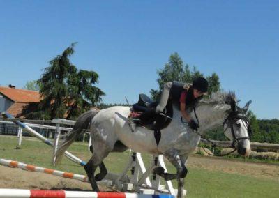 oboz-konie-2015-6-0070