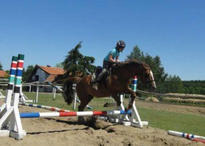 oboz-konie-2015-6-0072