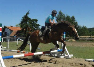oboz-konie-2015-6-0074