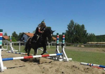 oboz-konie-2015-6-0075