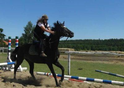 oboz-konie-2015-6-0077