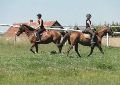 oboz-konie-2015-6-0078