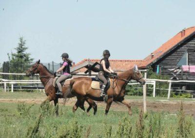 oboz-konie-2015-6-0080