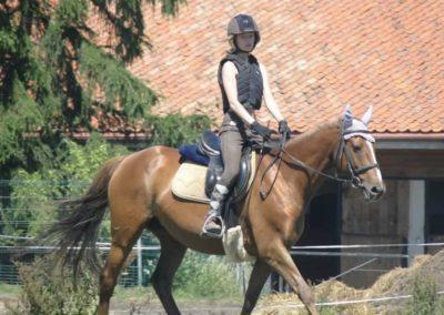 oboz-konie-2015-6-0081