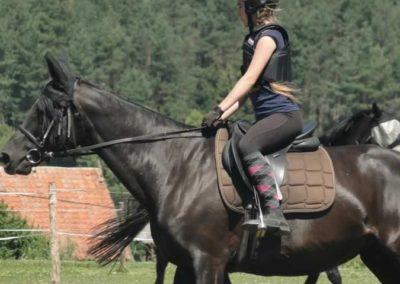oboz-konie-2015-6-0093
