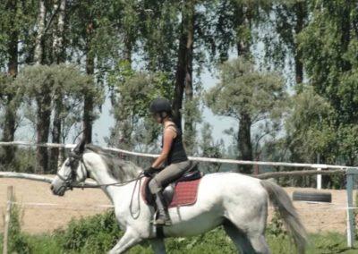 oboz-konie-2015-6-0099