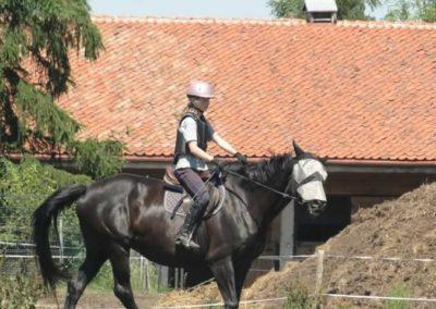 oboz-konie-2015-6-0110