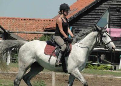 oboz-konie-2015-6-0111