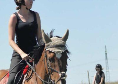 oboz-konie-2015-6-0123