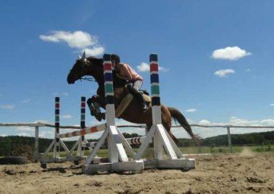 oboz-konie-2015-6-0128
